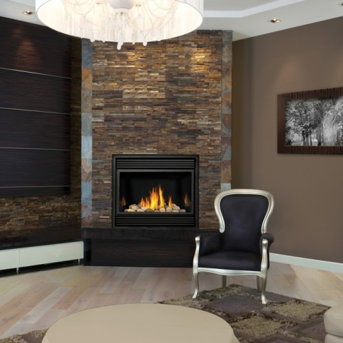 Napoleon gd36 direct vent gas fireplace napoleon gd36 napoleon alternative views asfbconference2016 Image collections